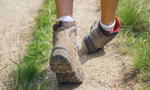 Ankle Twist