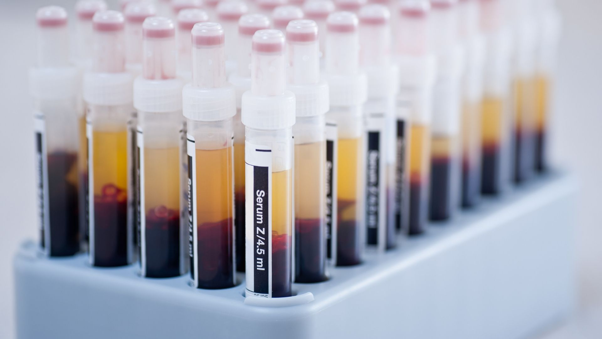 Stem Cell Platelets